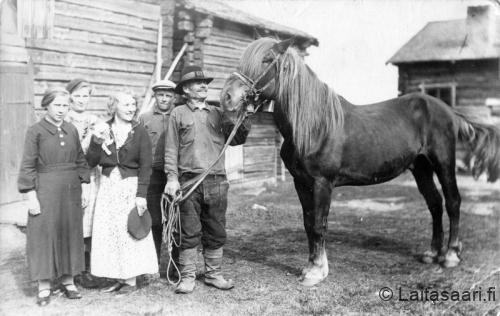 Väkeä hevosen kanssa