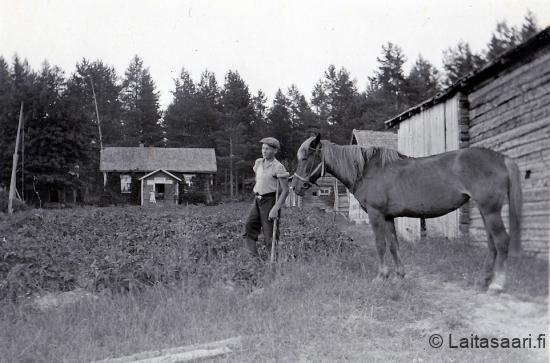 Kauppi-Lehtovaara